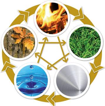 Die 5 Elemente der Traditionellen Chinesischen Medizin: Wasser, Metall, Erde, Feuer, Holz
